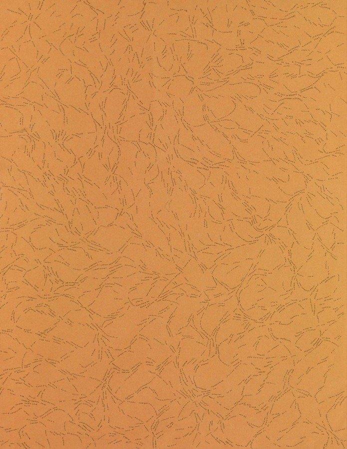 Dadamaino, Interludio, 1981, 62,5x48 cm