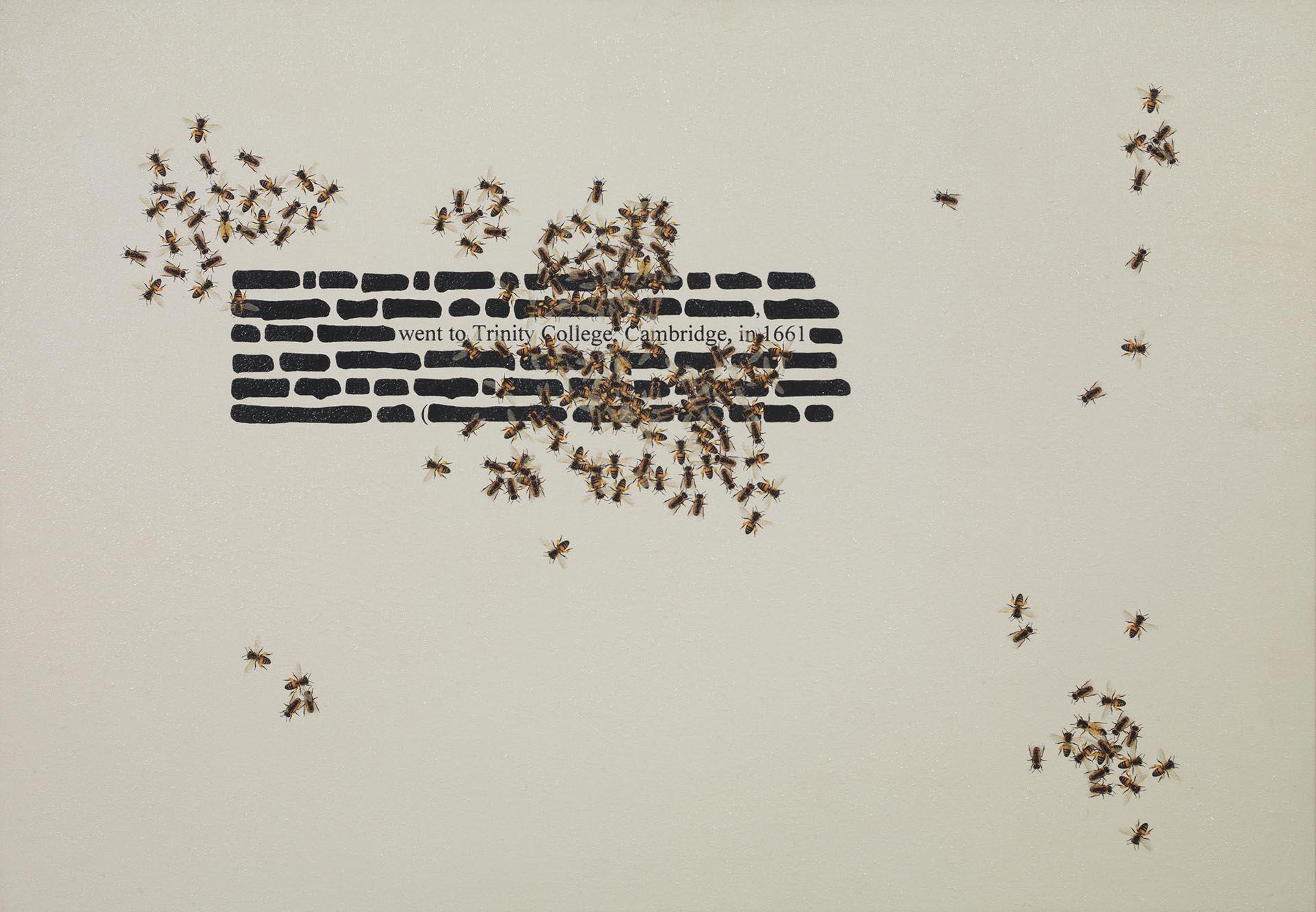 Isgrò, Trinity college, 2009, 70x100 cm